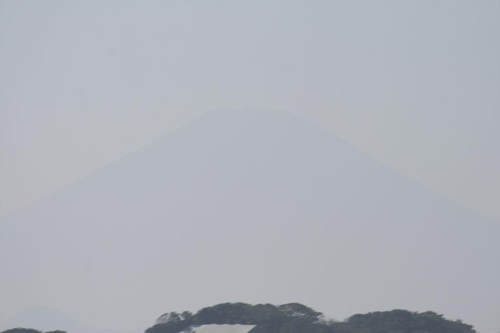 Vorschaubild für IMG_7013.JPG